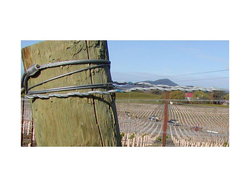 Vineline Connectors